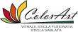 Sticla decorativa - COLOR ART