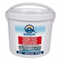 Oxigen activ pudra pentru piscine