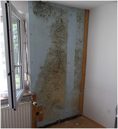 Riscul unei izolări interioare inadecvate. Soluţia: sistemul de control al umidităţii din locuinţe de la SKAMOL