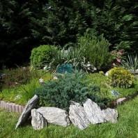Rocarie Wood Stone 10-30 cm KG PIATRAONLINE  AG-3042