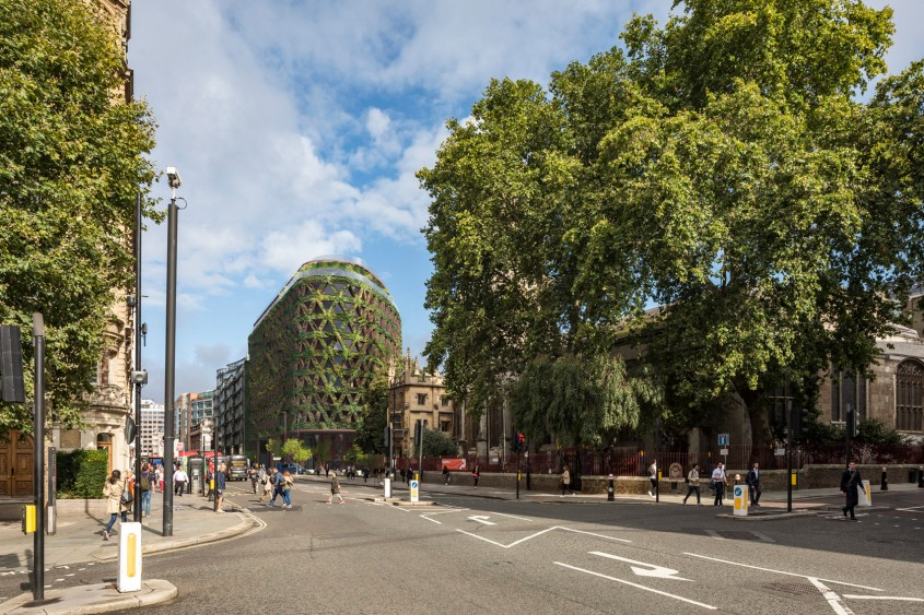 Cel mai mare perete verde din Europa va absorbi opt tone de emisii poluante pe an