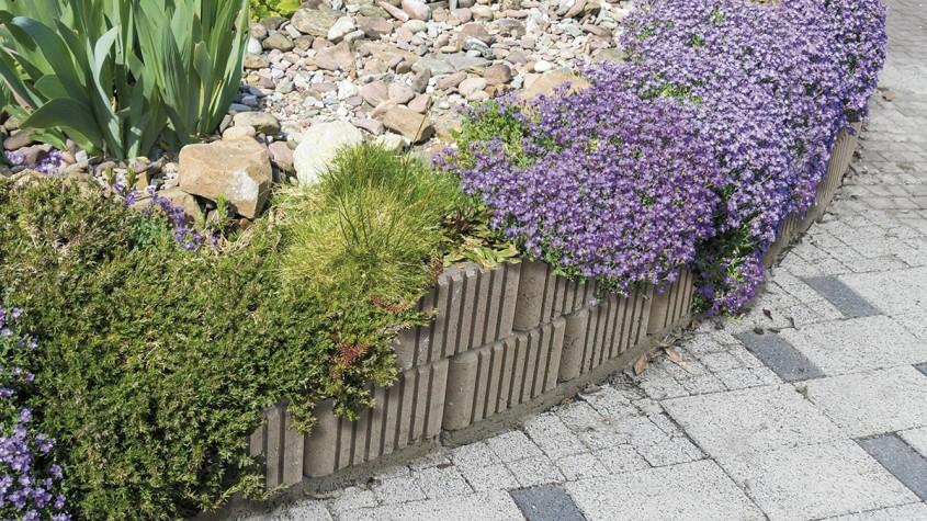 Primăvara și grădina în 8 pași simpli