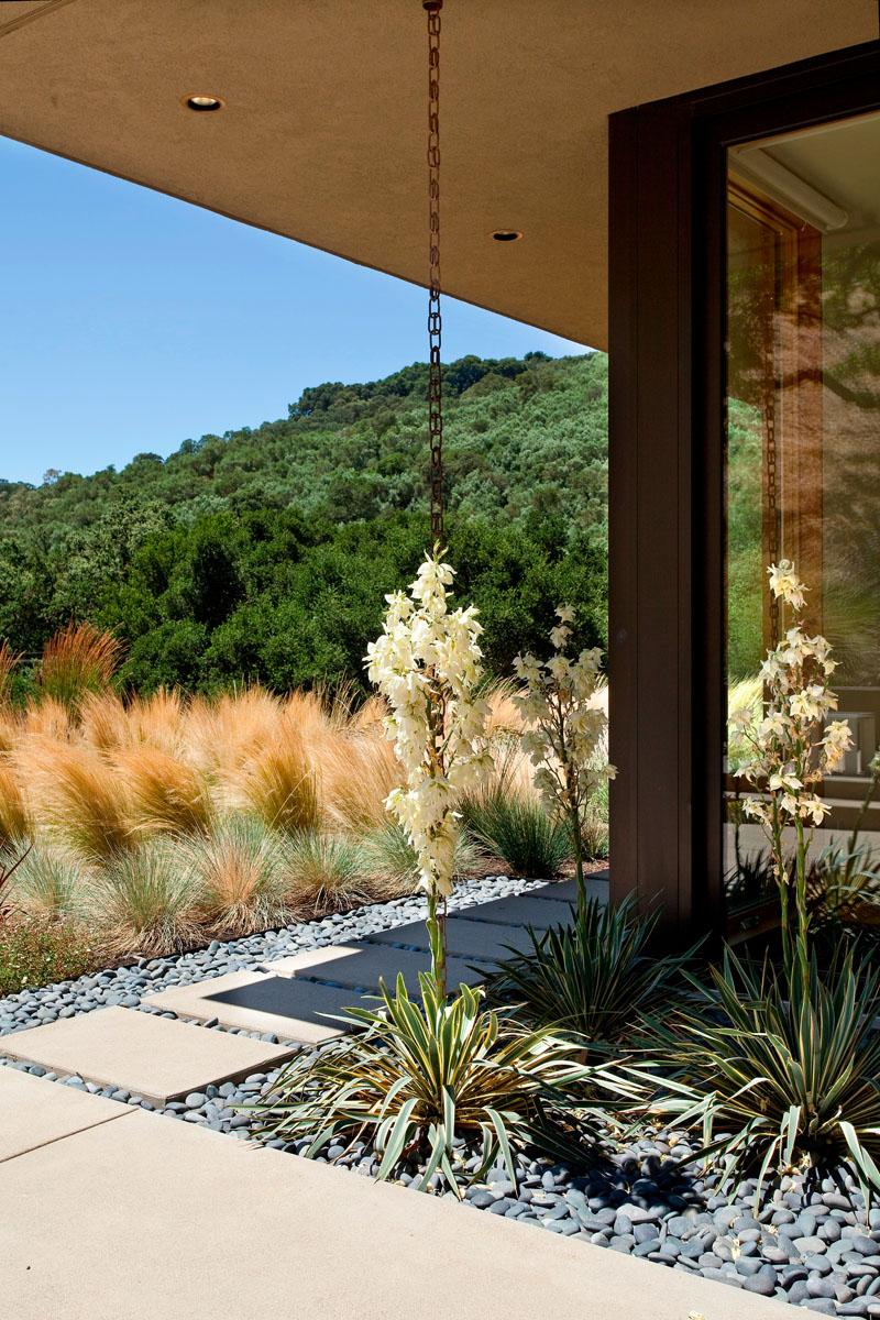 Cum de cele mai multe ori lanturile sunt amplasate intr-o jardiniera, plantele ajung sa se catere pe ele, creand un element decorativ deosebit