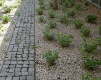 Piatra Cubica Granit Gri Sare si Piper Natur 5 x 5 x 5cm - PC-3270