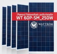 Panou fotovoltaic WT 250P