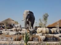Tematizari parcuri de distractii, parcuri zoo, muzee, mall-uri