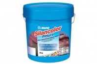 Vopsea pe baza de rasini siloxanice - SILANCOLOR PITTURA