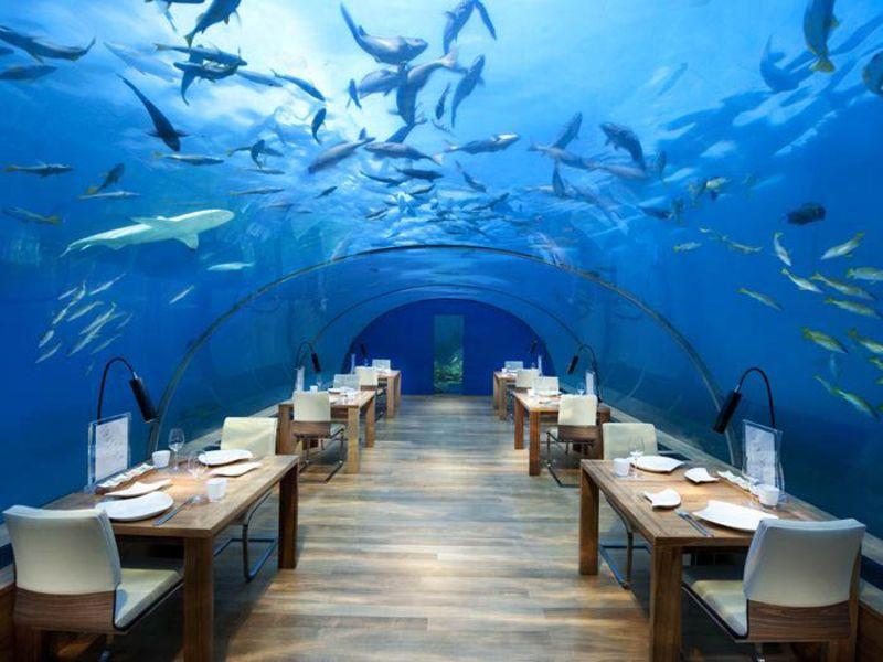 Restaurantul Ithaa a fost inaugurat in 2005.