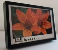 Rama metalica - INTACT