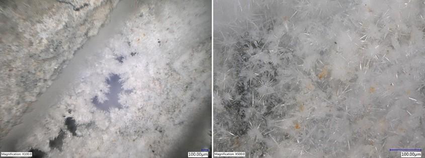 Figura 1 & 2: Creșterea cristalelor în beton fisurat (stânga: mărire x100, dreapta: mărire x500)
