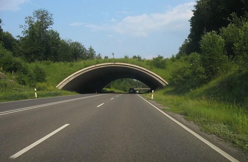 Un pod pentru animalele salbatice peste autostrada B38 din Birkenau, Germania