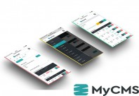 Aplicatie web - Modul ANRE MYCMS
