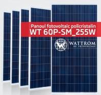 Panou fotovoltaic WT 255P