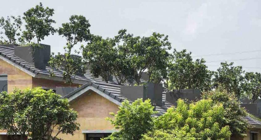 Pe acoperișul acestei case moderne din pământ bătătorit cresc pomi fructiferi