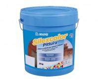 Vopsea silicatica - SILEXCOLOR PITTURA