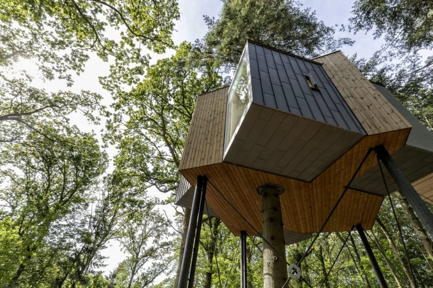 Hotelul din copac care îți oferă priveliști de vis din natură în toate direcțiile