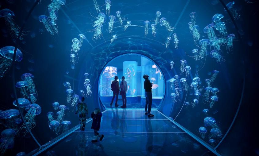 Tărâmul lui Poseidon, un acvariu spectaculos care imită valurile mării în Viena