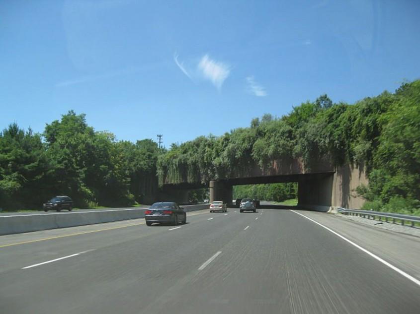 Pod pentru animale peste autostrada Interstate 78 din New Jersey, SUA