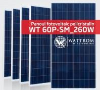 Panou fotovoltaic WT 260P