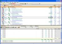 Arquimedes - Programul versatil pentru management de proiect