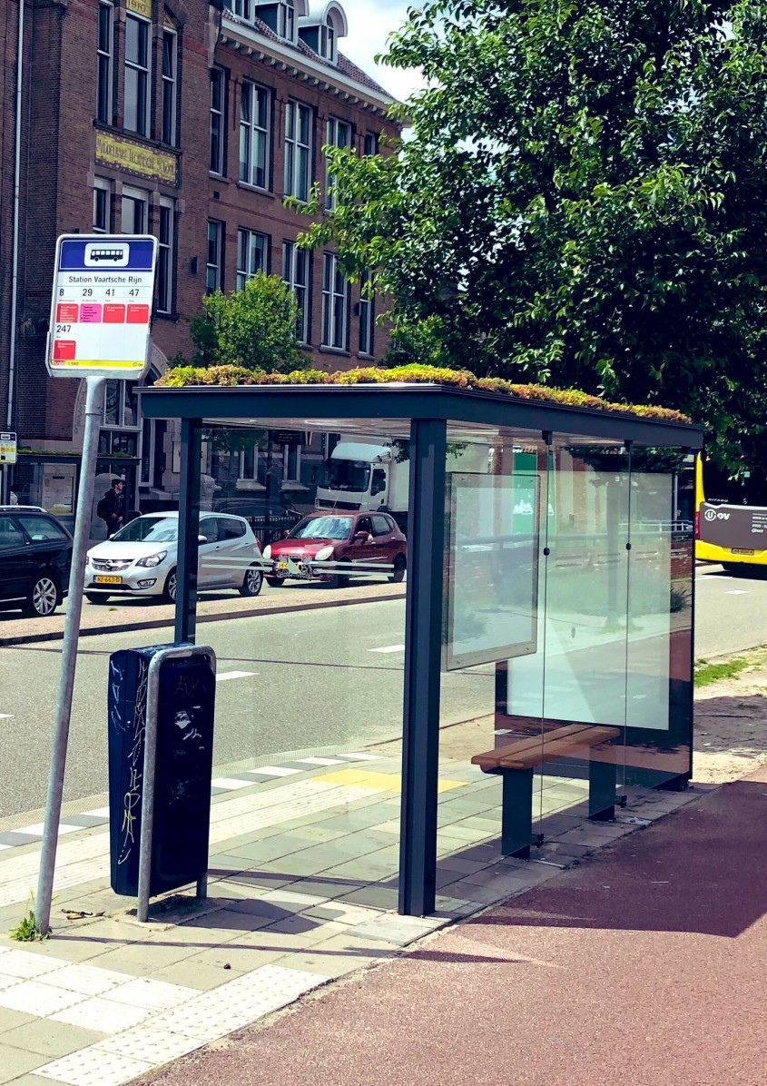 Un oraș european a instalat acoperișuri verzi în sute de stații de autobâzzz