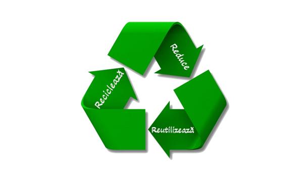 Profilele WPC și sustenabilitatea în secolul consumului