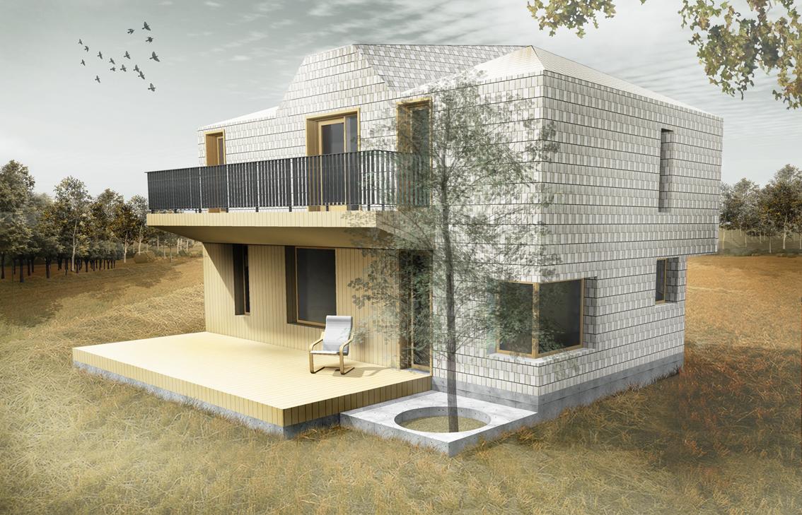 Casa de vacanta P+M - Pitesti AsiCarhitectura