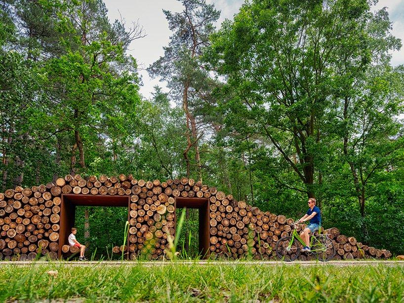 Pedalând printre coroanele copacilor. O pistă pentru biciclete construită la înălțime în pădure