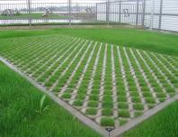 Pavaj din beton - EcoNatura