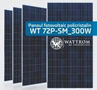Panou fotovoltaic WT 300WP