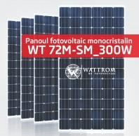 Panou fotovoltaic WT 300M