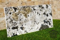 Granit - Alaska White Lucios