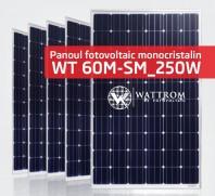 Panou fotovoltaic WT 250M