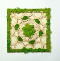 Tablou cu licheni - Mandala