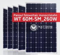 Panou fotovoltaic WT 260M