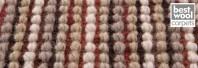Mocheta lana Africa