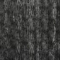 Panou decorativ 14806 WOOD Holz Dakota culoare negru