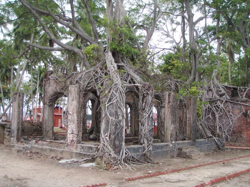 <b>Insula Ross, India</b>