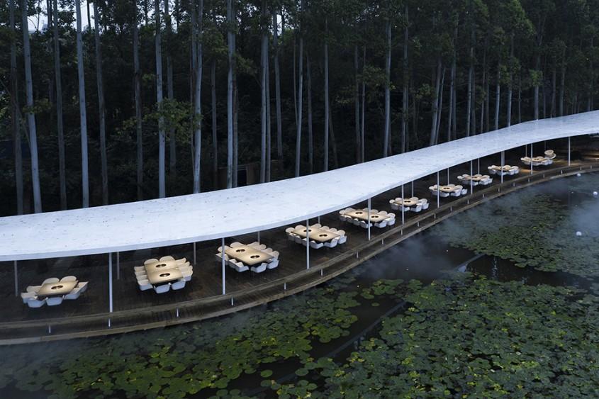 Un restaurant inedit care șerpuiește printr-o pădure de eucalipt