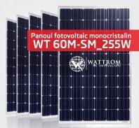 Panou fotovoltaic WT 255M