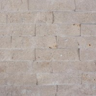 Limestone Astoria Scapitata 4 x 15 x 1.5cm PIATRAONLINE  PND-682