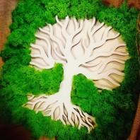 Tablou cu licheni - Pomul Vietii