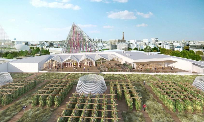 Orașul care va avea cea mai mare fermă de pe acoperiș din lume