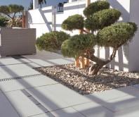 Asti Natura - Dale cu suprafata beton aparent