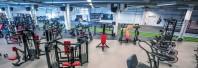 Pardoseli Sportive - Fitness & body-building - Sportec Color 15