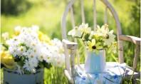 Soluții eficiente de amenajare pentru grădină In cazul in care vrei sa iti amenajezi curtea frumos