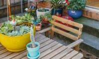 Soluţii pentru terasele exterioare de mici dimensiuni Va prezentam cateva sugestii despre cum puteti sa faceti