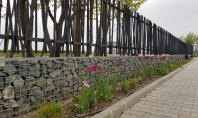 Întoarce-te la natură cu un gard deosebit Intentia lor era de a personaliza spatiile constructiile si