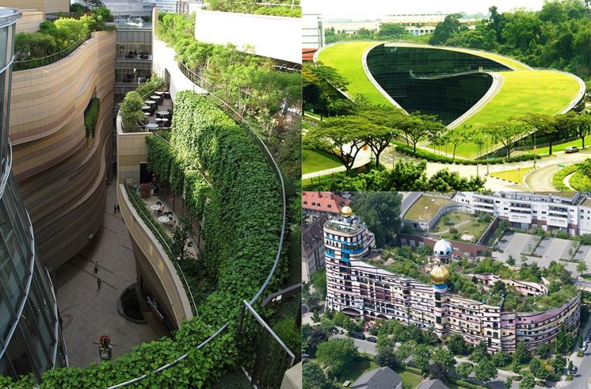 Acoperișuri verzi pentru oraşe sănătoase. 10 exemple impresionante