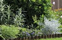COMPO pentru plante frumoase si gradini elegante! Testeaza pe www.hai-la-casa.ro!